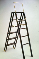 library-ladder-big